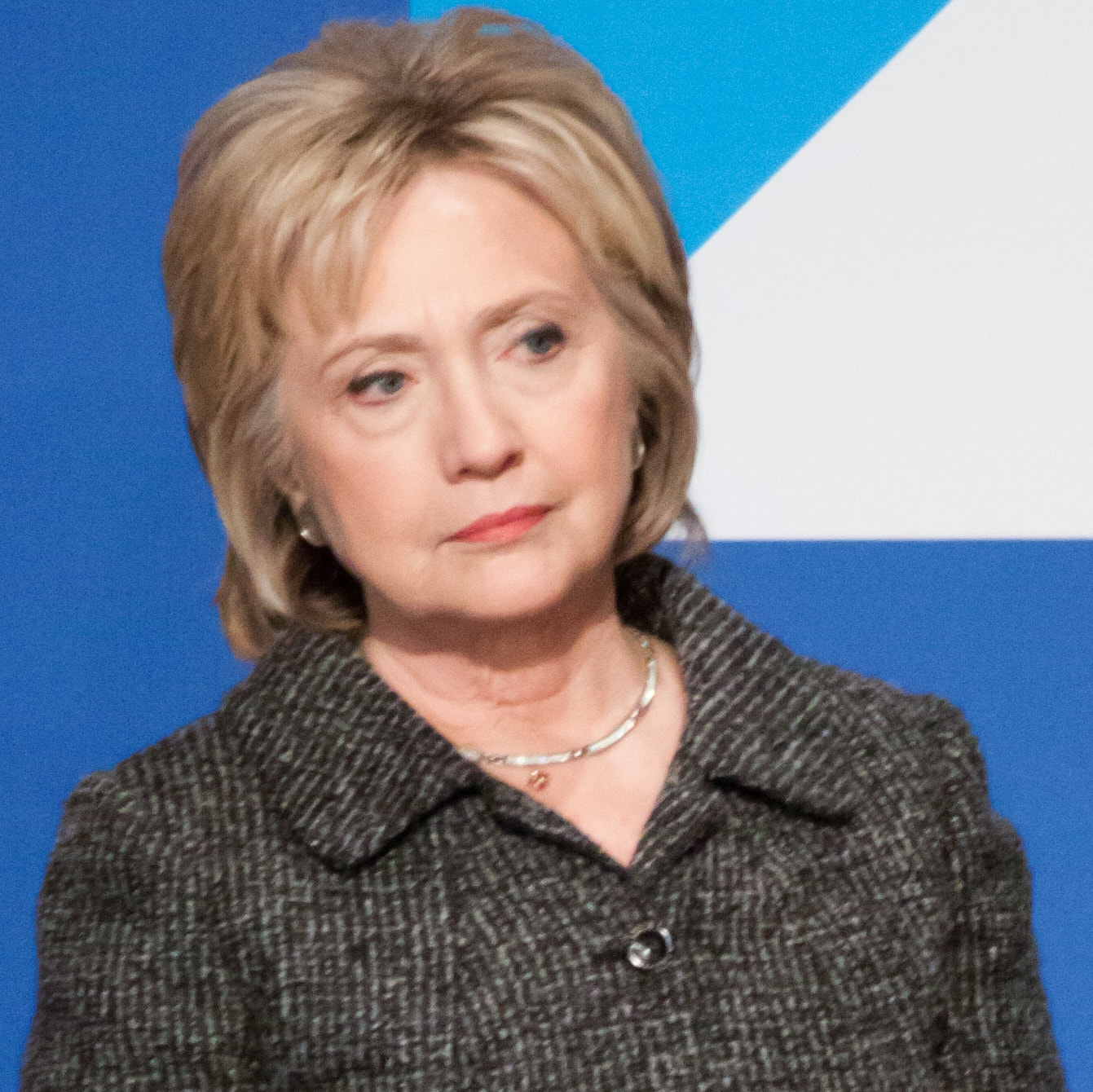clinton masters thesis Hillary clinton masters thesis hillary clinton to whatever degree they can successfully resurrect alinsky from the dead and recast him as the tina shawal photography.